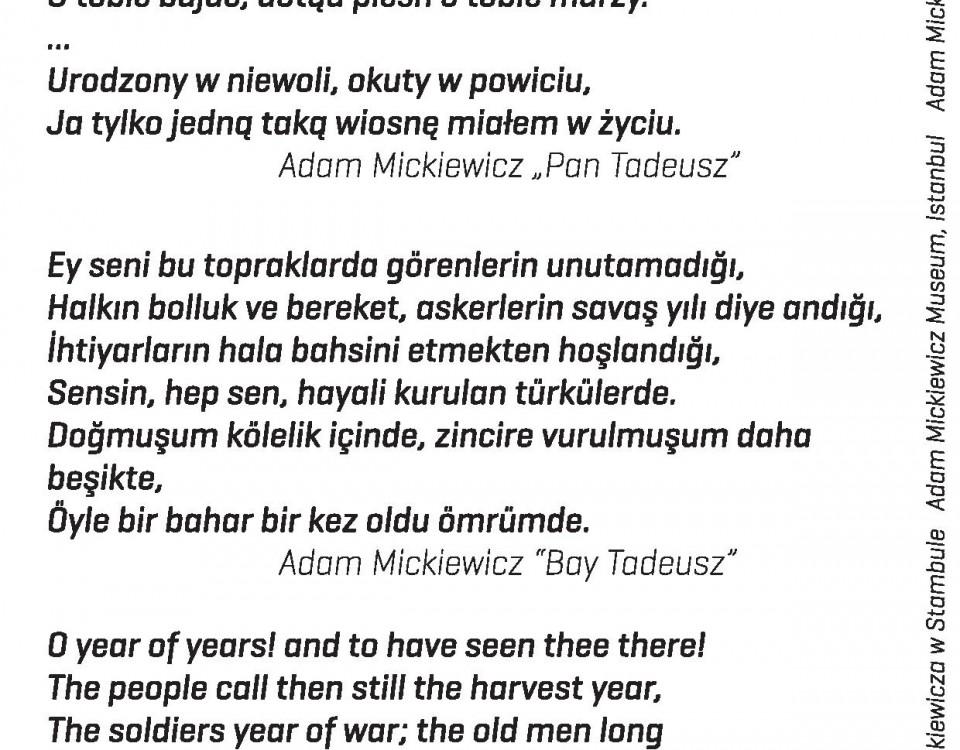 Pan Tadeusz - o roku ów-page-001